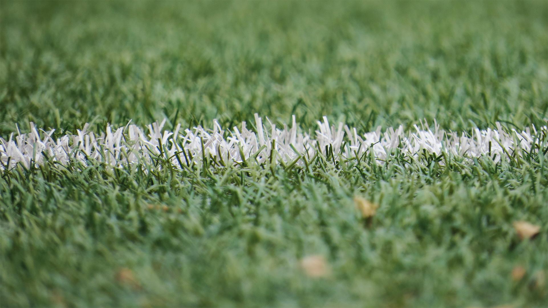 grass-line